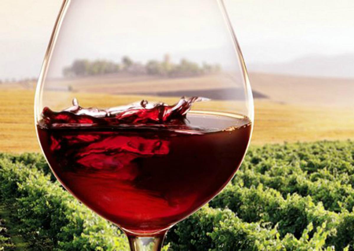 Wine, Italy is still leader despite a poor vintage