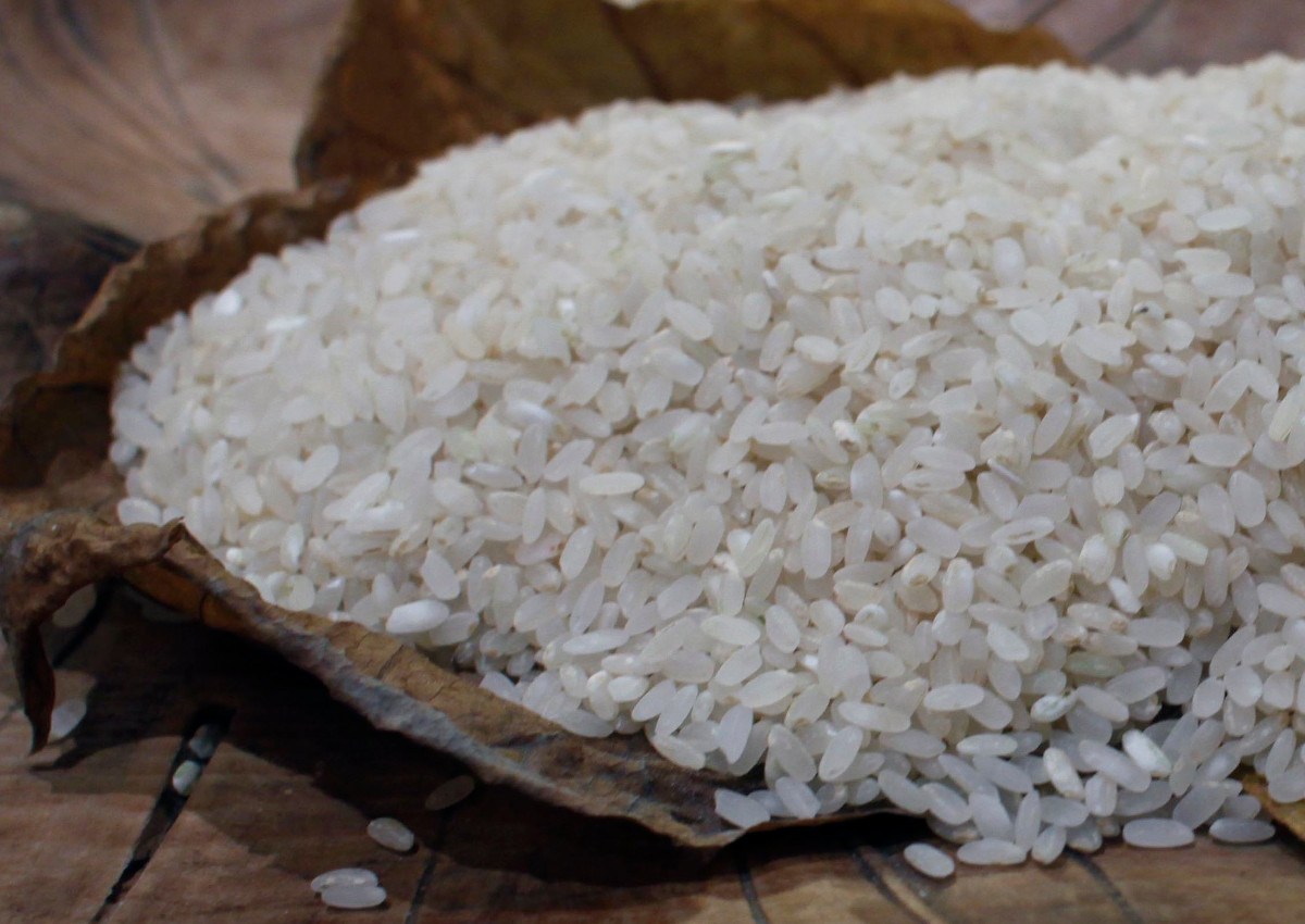 Italy defends its rice from Asian imports