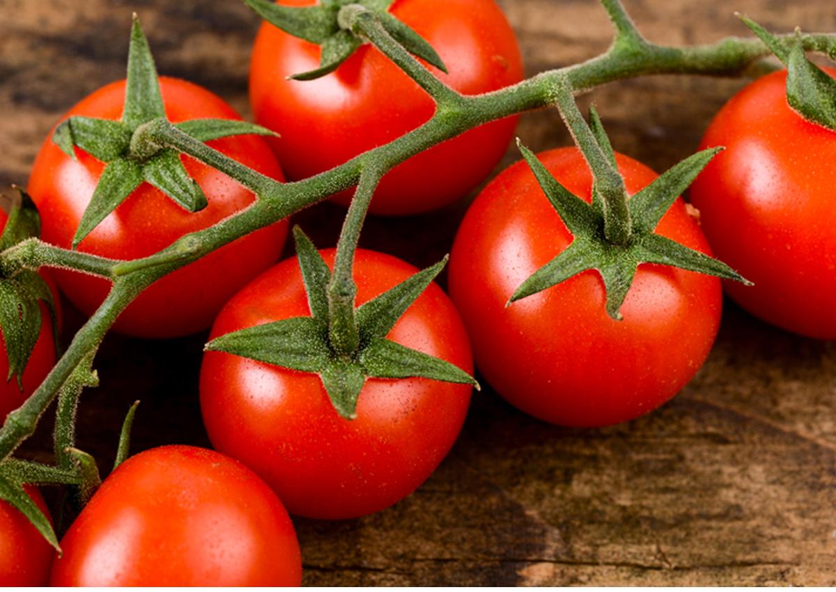 Tomato's organic boom