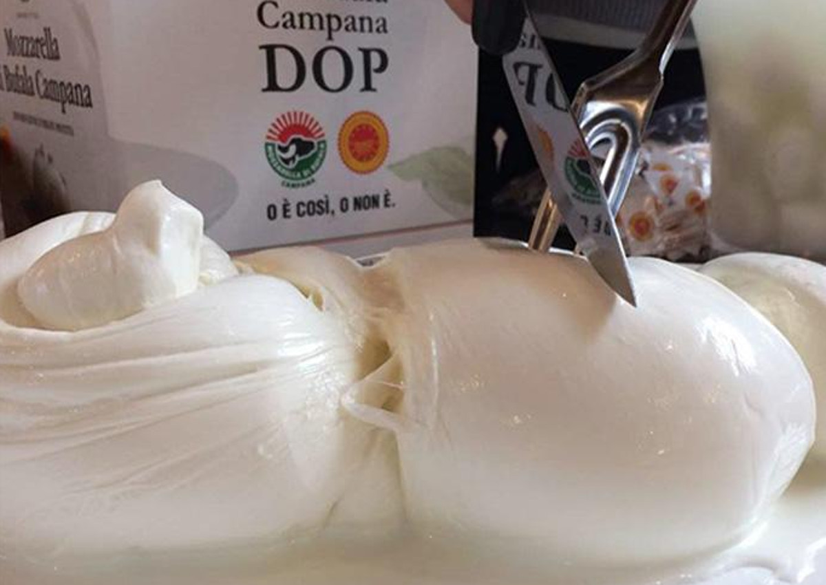 Buffalo Mozzarella PDO: discover the new sustainable packaging